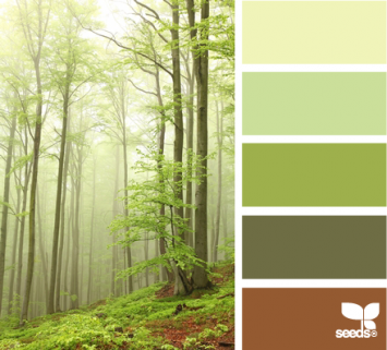 Natural shades of green complemented by the forest color palette.