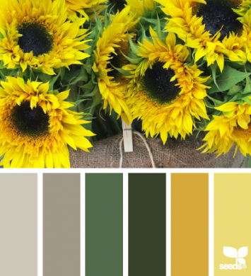 Sunflower bunches color palette.