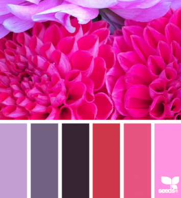 Fuchsia and purple color palette for fun and vibrant party!
