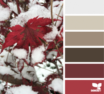 Holiday themed color inspiration First Snow by Design Seeds.