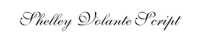 Shelley Volante Script Font for Place Cards